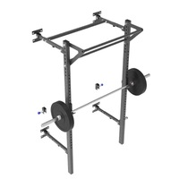 Wall Mounted Fold Up Squat and Pull-Up Rack 2.0